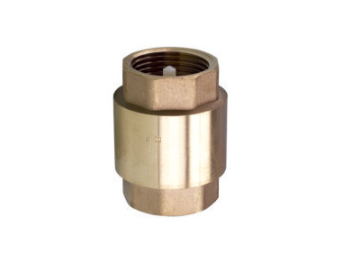 ART.6101  Vertical check valve